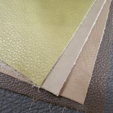 Protected Leathers